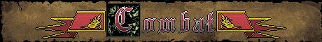 Banner_Combat